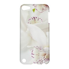 Orchids Flowers White Background Apple Ipod Touch 5 Hardshell Case