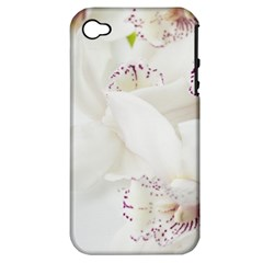 Orchids Flowers White Background Apple Iphone 4/4s Hardshell Case (pc+silicone)