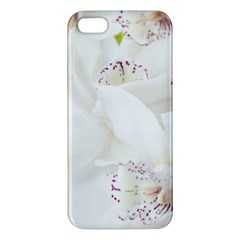 Orchids Flowers White Background Apple Iphone 5 Premium Hardshell Case