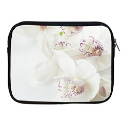 Orchids Flowers White Background Apple Ipad 2/3/4 Zipper Cases