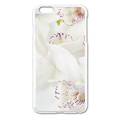Orchids Flowers White Background Apple Iphone 6 Plus/6s Plus Enamel White Case