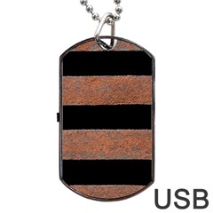 Stainless Rust Texture Background Dog Tag Usb Flash (two Sides)
