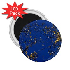 Poplar Foliage Yellow Sky Blue 2 25  Magnets (100 Pack)
