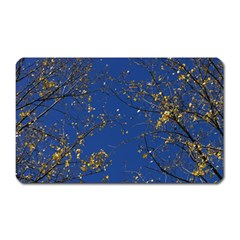 Poplar Foliage Yellow Sky Blue Magnet (rectangular)