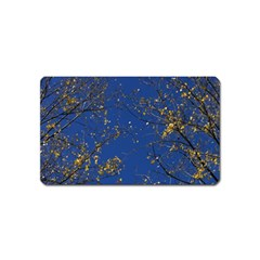 Poplar Foliage Yellow Sky Blue Magnet (name Card)