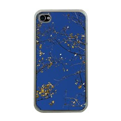 Poplar Foliage Yellow Sky Blue Apple Iphone 4 Case (clear)