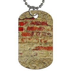 Wall Plaster Background Facade Dog Tag (two Sides)