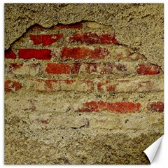 Wall Plaster Background Facade Canvas 20  X 20