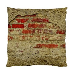 Wall Plaster Background Facade Standard Cushion Case (two Sides)