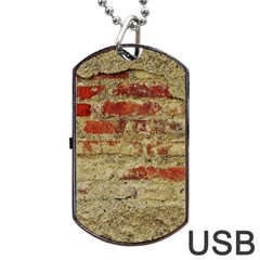 Wall Plaster Background Facade Dog Tag Usb Flash (one Side)