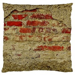 Wall Plaster Background Facade Large Cushion Case (two Sides)