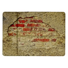 Wall Plaster Background Facade Samsung Galaxy Tab 10 1  P7500 Flip Case