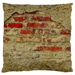 Wall Plaster Background Facade Large Flano Cushion Case (two Sides)