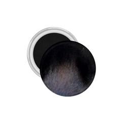 black to gray fade 1.75  Magnet