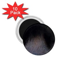 black to gray fade 1.75  Magnet (10 pack)