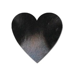black to gray fade Magnet (Heart)