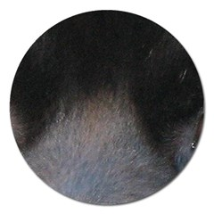 black to gray fade Magnet 5  (Round)