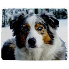 Australian Shepherd Blue Merle 3 Jigsaw Puzzle Photo Stand (Rectangular)