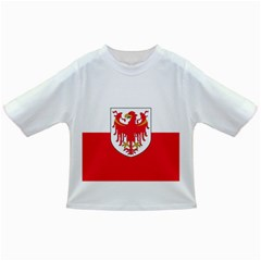 Flag of South Tyrol Infant/Toddler T-Shirts