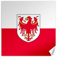 Flag of South Tyrol Canvas 12  x 12