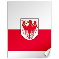 Flag of South Tyrol Canvas 12  x 16