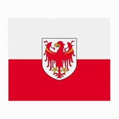 Flag of South Tyrol Small Glasses Cloth (2-Side)