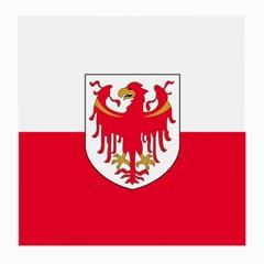 Flag of South Tyrol Medium Glasses Cloth