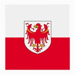 Flag of South Tyrol Medium Glasses Cloth (2-Side)