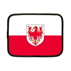 Flag of South Tyrol Netbook Case (Small)