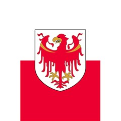 Flag of South Tyrol 5.5  x 8.5  Notebooks