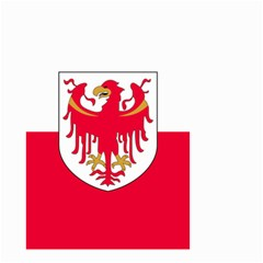 Flag of South Tyrol Small Garden Flag (Two Sides)