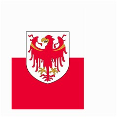 Flag of South Tyrol Large Garden Flag (Two Sides)