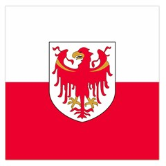 Flag of South Tyrol Large Satin Scarf (Square)