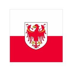 Flag of South Tyrol Small Satin Scarf (Square)