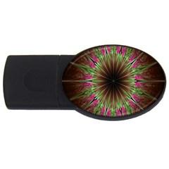 Julian Star Star Fun Green Violet Usb Flash Drive Oval (4 Gb)