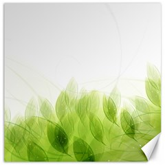 Green Leaves Pattern Canvas 12  X 12