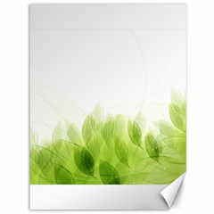 Green Leaves Pattern Canvas 36  X 48