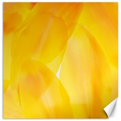 Yellow Pattern Painting Canvas 12  X 12