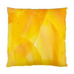 Yellow Pattern Painting Standard Cushion Case (one Side)