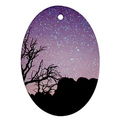 Arches National Park Night Ornament (Oval)