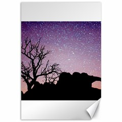 Arches National Park Night Canvas 12  X 18