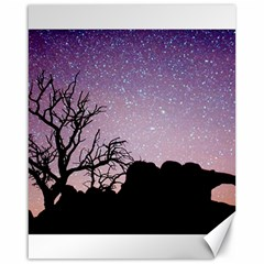 Arches National Park Night Canvas 16  X 20