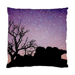 Arches National Park Night Standard Cushion Case (two Sides)