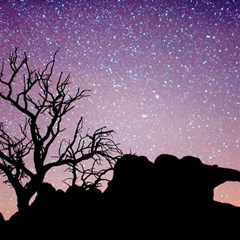 Arches National Park Night Magic Photo Cubes