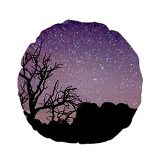 Arches National Park Night Standard 15  Premium Round Cushions
