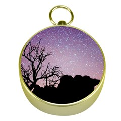 Arches National Park Night Gold Compasses