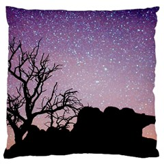 Arches National Park Night Standard Flano Cushion Case (two Sides)