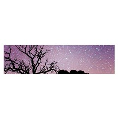 Arches National Park Night Satin Scarf (oblong)