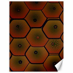 Art Psychedelic Pattern Canvas 12  X 16