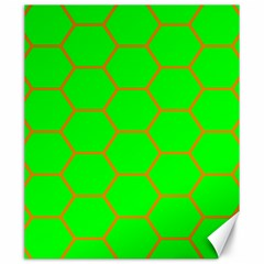 Bee Hive Texture Canvas 20  X 24